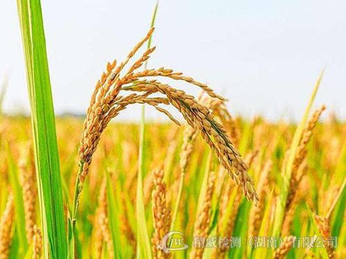 农产品监测